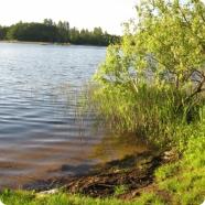 Фото конкретного места для охоты