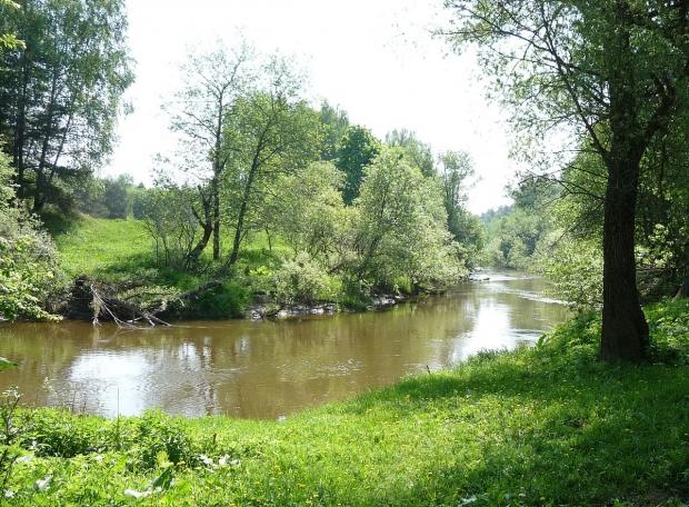 Изгиб реки по направлению к Клязьме