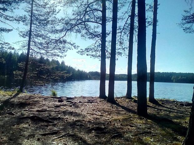 Щукино озеро