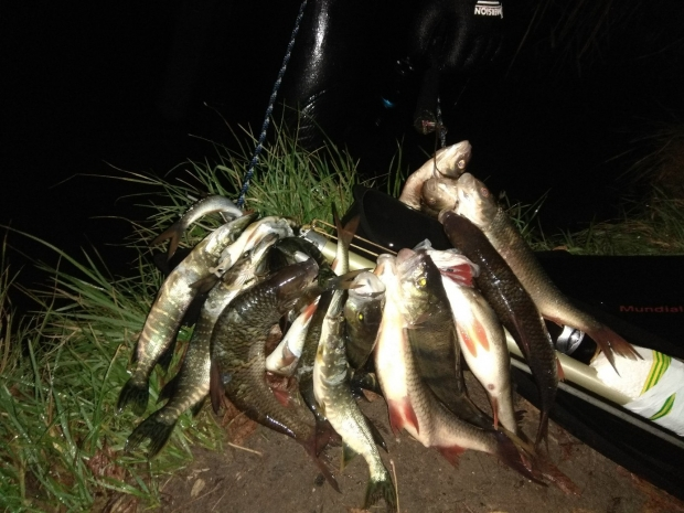 ночная охота в ноябре.