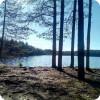 Озеро Щукино. Хорошо для отдыха, плохо для охоты.