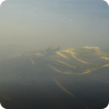 Река Шерна (от пос. Дворщики до Заречья)