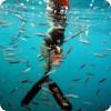 Подводная охота и женщина